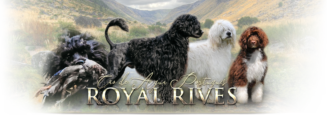 Royal Rives
